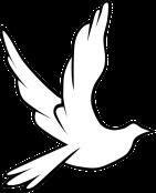 dove-24588_640